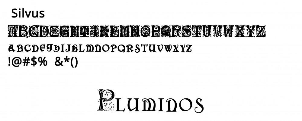 Font per Logo di Pluminos